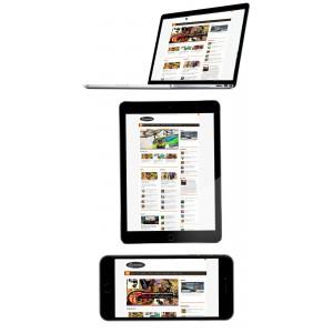 Criação de Site Portal de Notícias